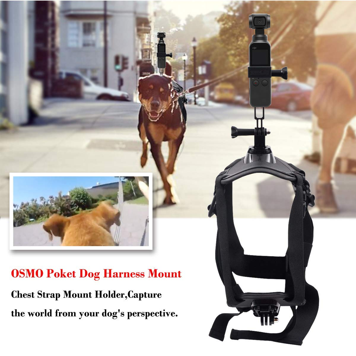 BeesClover Dog Harness Mount Chest Strap Mount Holder Pet Harness Adjustable Outdoor Pet Vest for DJI OSMO Pocket Hero 6/5 /5/4/3+ Session DBPOWER AKASO Sony Sports DV etc. Camera by BeesClover