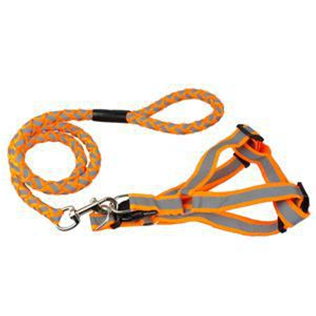 Step-In Adjustable Reflective Nylon Noctilucent Small Dog Puppy Harness Leash Lead Set Orange S