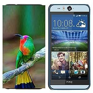 EJOOY---Cubierta de la caja de protección para la piel dura ** HTC Desire Eye M910x ** --pájaro tropical del pájaro cantante amarillo marrón