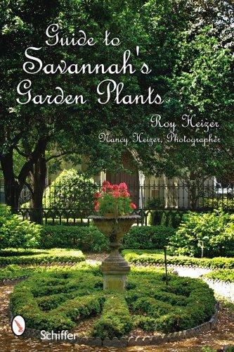 Savannah's Garden Plants