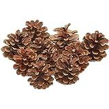 OULII - Pigne fatte seccare naturalmente, ideali per decorazioni natalizie, 48 pezzi, colore marrone