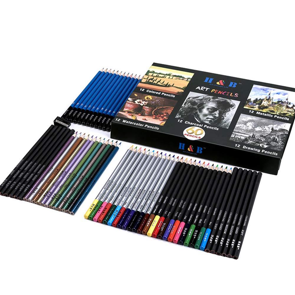 Crazy lin Advanced Color Pencil Set, Professional Art Pencil, 60 Pencils in Color Box by Crazy lin