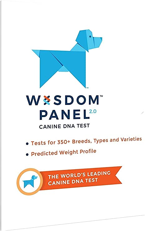 order online pretty nice on feet shots of Wisdom Panel Dog DNA Test Kit - Canine Breed Identification and Ancestry  Information