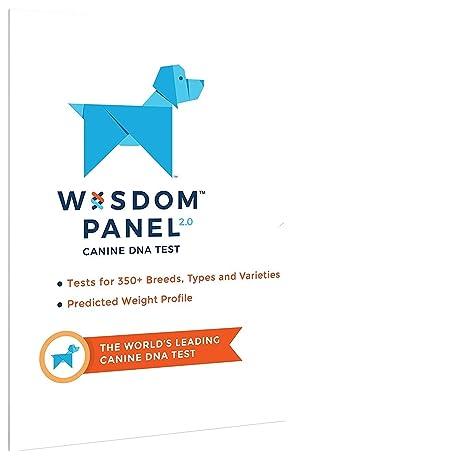 Amazon.com: Kit de prueba de ADN para razas mixtas de Wisdom ...