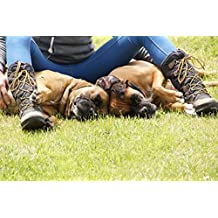 LAMINATED POSTER Land Boxer Dogs Idea Two Boots Boxer Speed Motif Poster Print 24 x 36