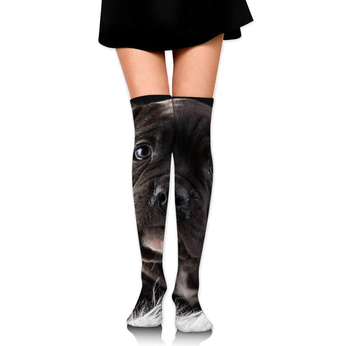 High Elasticity Girl Cotton Knee High Socks Uniform Cute Puppy Black Dog Women Tube Socks