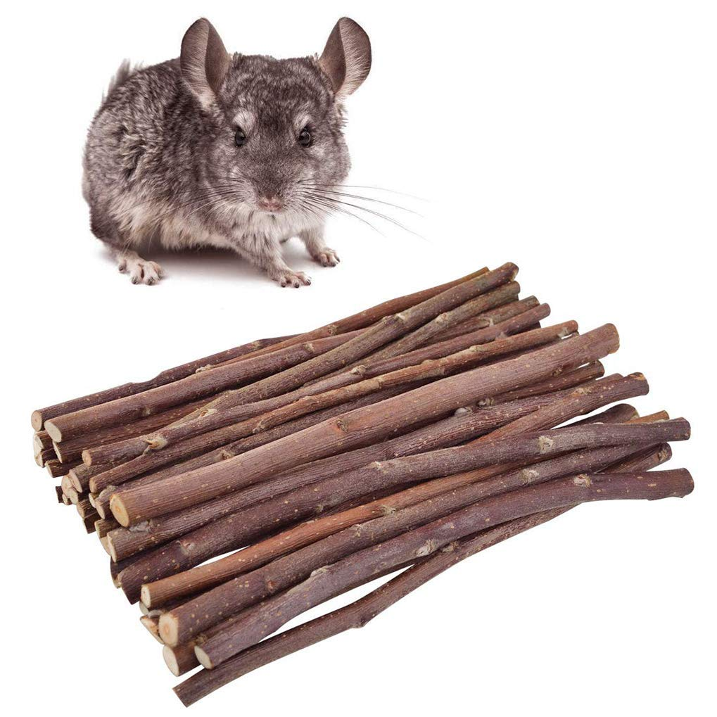 Cavia Ratto Giocattoli da Masticare e Accessori Esercizio Rullo Campana Palle per Animali Domestici Gioco Giocattolo Lystaii Set di 8 Pezzi di Giocattoli di Criceto
