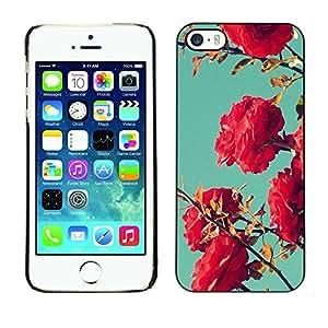 FECELL CITY // Duro Aluminio Pegatina PC Caso decorativo Funda Carcasa de Protección para Apple Iphone 5 / 5S // Bush Pink Red Teal Sky Nature Blue