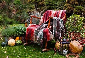Super Amazon Com Baocicco Autumn Backdrop Outdoor Autumn Harvest Ibusinesslaw Wood Chair Design Ideas Ibusinesslaworg