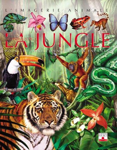 Les Animaux de la jungle : Pour les faire connaître aux enfants Relié – 27 mai 2004 Franco Tempesta FLEURUS 2215080639 Livres pour la jeunesse