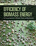 Efficiency of Biomass Energy: An Exergy Approach to Biofuels, Power, and Biorefineries