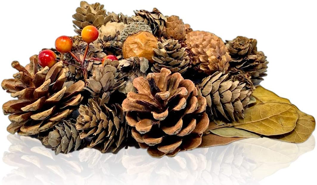 4 Bags of Pine Cones Leaves Orange Berries Unscented- Perfect for Potpourri Vase Bowl Filler BANBERRY DESIGNS Pinecones and Fall Leaves Acorn Farmhouse Autumn Christmas Home Decoration
