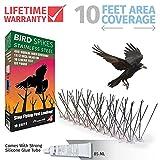 Aspectek Stainless Steel Bird Spikes 10 Feet (3 Metre), Bird Deterrent Kit With Transparent Silicone Glue