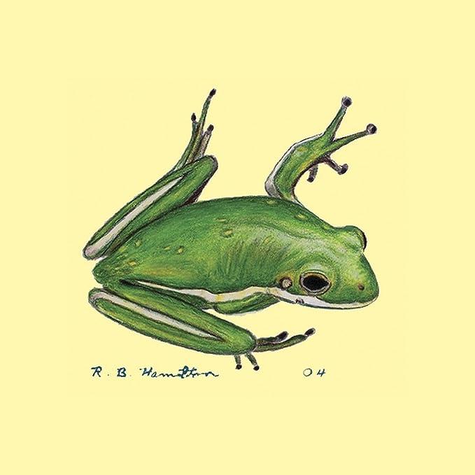 Betsy Drake CT040 Tree Frog Coaster Set of 4