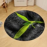 Gzhihine Custom round floor mat Top Down Closeup Beautiful Spa Composition of Green Branch Bamboo on Zen Basalt Stones