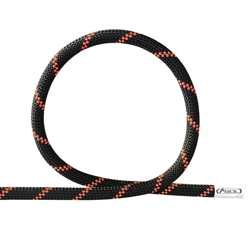 C FLYSXP Corde d'escalade Corde Statique Travail aérien Corde équipement de Sauvetage en Plein air Dupont Nylon Corde diamètre de 10,5 12   13mm Corde d'escalade (Couleur   B, Taille   10.5MM 20M) 13MM 100M