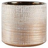 Rivet Rustic Textured Stoneware Indoor Planter Pot, 5 Inch Height, Bronze