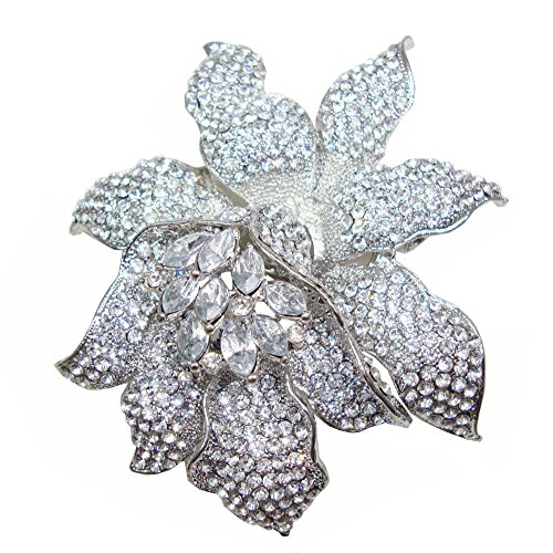 Large Rhinestone Crystal (TTjewelry Classic Crystal Rhinestone Large Flowers Orchid Brooch Pins Woman Jewelry B10461600 (White Silver-tone))