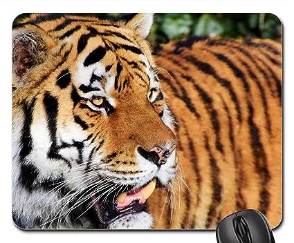 Amazon com : Mouse Pads - Tiger Cat Predator Wildcat Big Cat Tiger