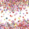 Mudder 1500 Pieces Fruit Flower Slices 3D Assorted Nail Art Decorations Nail Art Tips DIY Nail Sticker