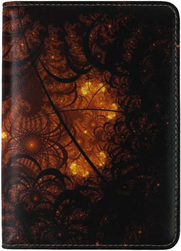 Fractal Tangled Glow Leather Passport Holder Cover Case Travel One Pocket
