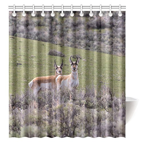 Price comparison product image CTIGERS Animal Shower Curtain Two Epronghorn Behind The Bushes Polyester Fabric Bathroom Decoration 66 x 72 Inch