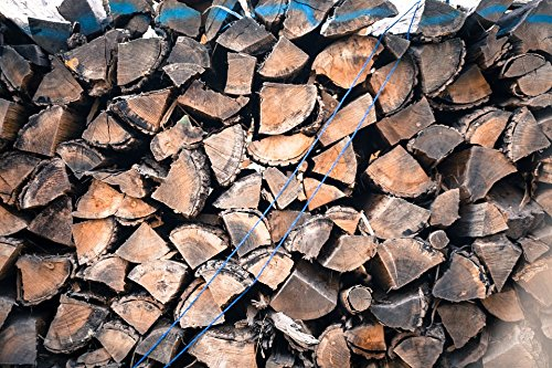 LAMINATED POSTER Bark Background Cut Down Combustible Fuel Firewood Poster 24x16 Adhesive Decal