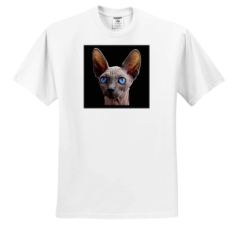 T-Shirts 3dRose Sven Herkenrath Animal Portrait of a Sphynx Cat with Blue Eyes Kitten