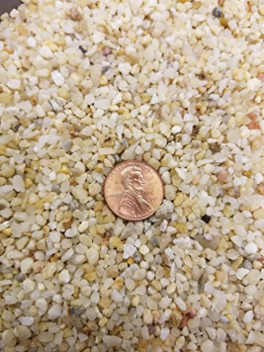 coarse-silica-sand-1-quart-for-bonsai-cacti-succulent-and-carnivorous-plant-mix