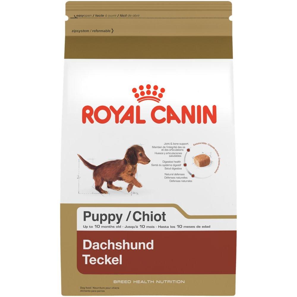 Royal Canin BREED HEALTH NUTRITION Dachshund Puppy dry dog food, 2.5-Pound