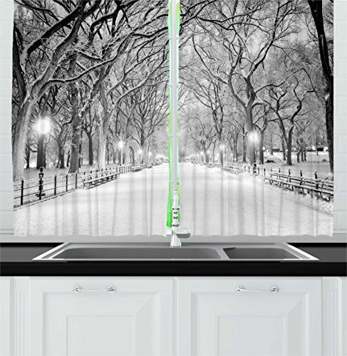 Ambesonne Winter Decor Kitchen Curtains, View of Central Park in Winter Snowy Trees and the Walkway Digital Print, Window Drapes 2 Panels Set for Kitchen Cafe, 55W X 39L Inches, Black and White For Sale