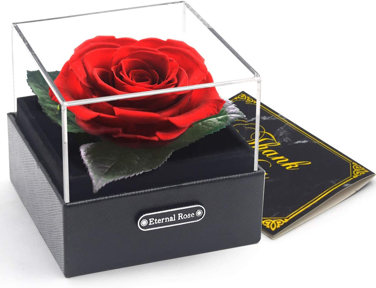 Ewige Rose Lila Rose Geschenk zum Valentinstag Jahrestag Weihnachten Geburtstag konservierte Rose,Nie verwelkte Rosen,Gehobene unsterbliche Blumen,Ewige Rosen Box,mit eleganter Geschenkbox