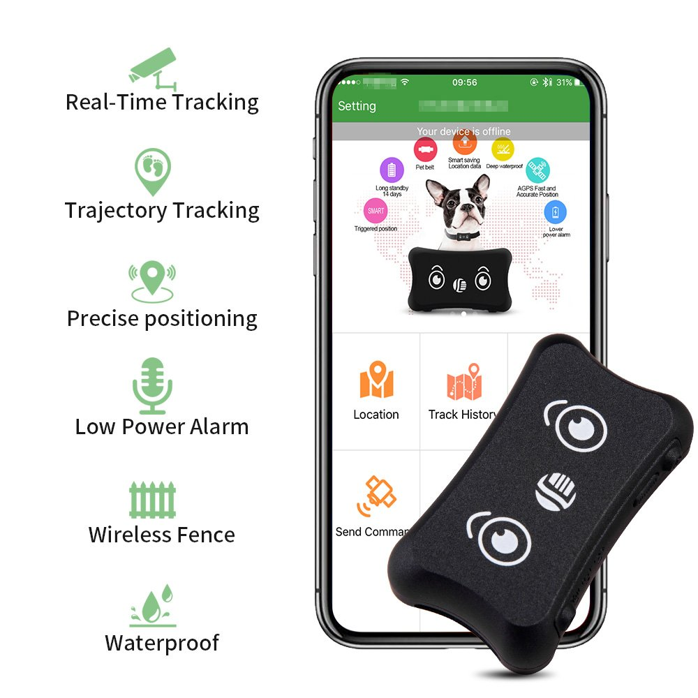 Pet GPS Tracker, Dog Activity Monitor for Android/iPhone Waterproof  Adjustable Collar Dogs and Pets