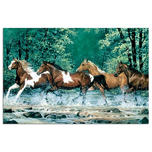 Horse Stationery (Tree-Free Greetings EcoNotes Stationary- Blank Note Cards with Envelopes, 4
