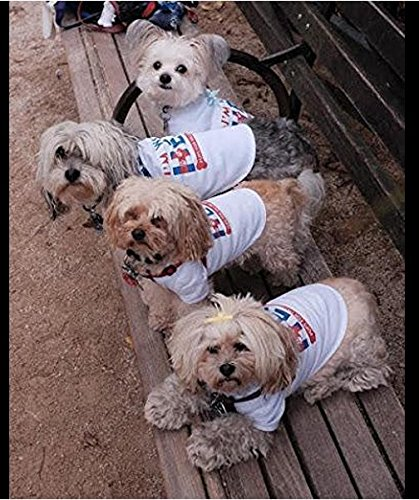 Pup for Hillary 2016- Dogs T-shirt (XXXXL – for Dogs 46-60 lbs.) Review