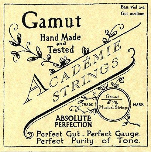Bass Viol a-2 Gut Medium (Viola Da Gamba Strings)