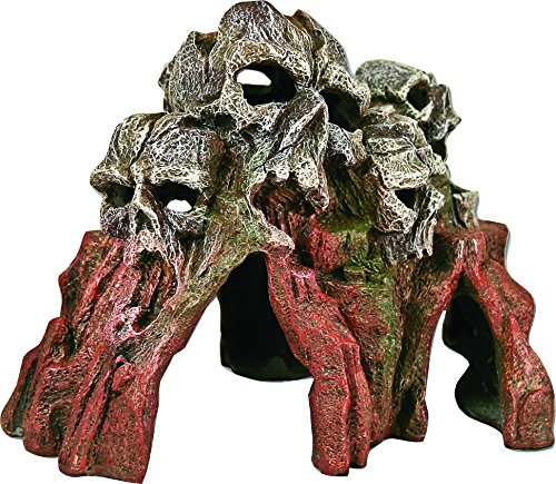Exotic Environments Skull Mountain