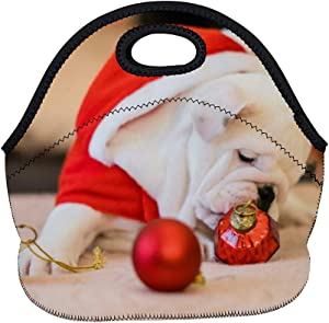 Neoprene Lunch Bag Bull Dog Near Ornaments Insulated Picnic Tote Boxes Backpack for Women Men Kids Basic Style with Zipper