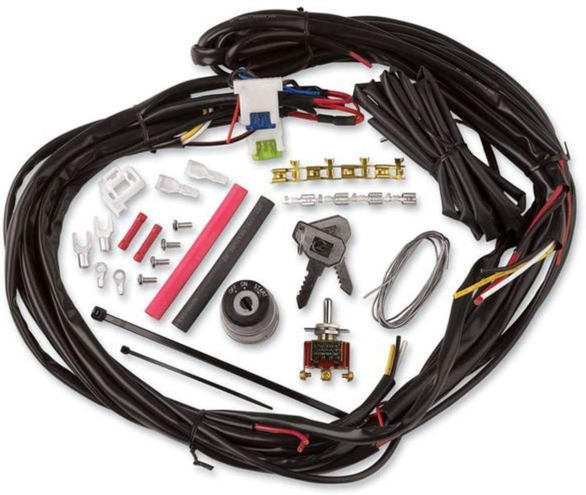 Amazon.com: CycleVisions Custom Wire Harness CV-4869: AutomotiveAmazon.com