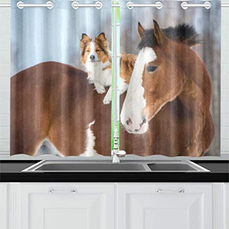Draft Horse Red Border Collie Dog Kitchen Curtains Window Curtain Tiers For Café Bath Laundry Living Room Bedroom 26 X 39 Inch 2 Pieces Amazon Ca Home Kitchen