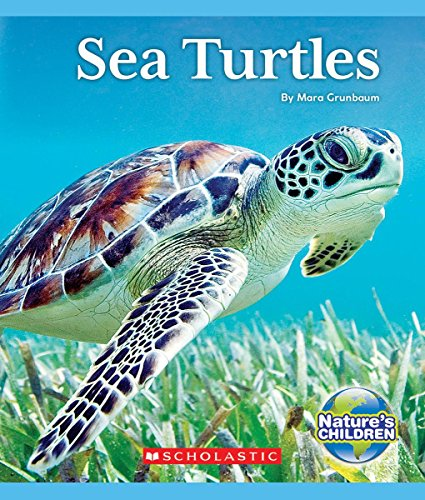 Sea Turtles (Nature's Children Animals in Danger!)