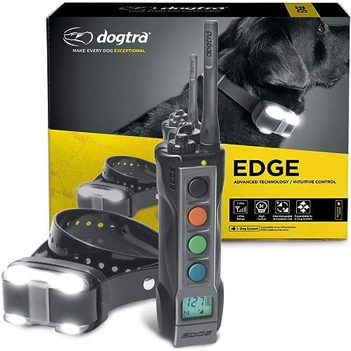 Best Long-Range Dog Training Collar: Dogtra Company Remote Training Collar