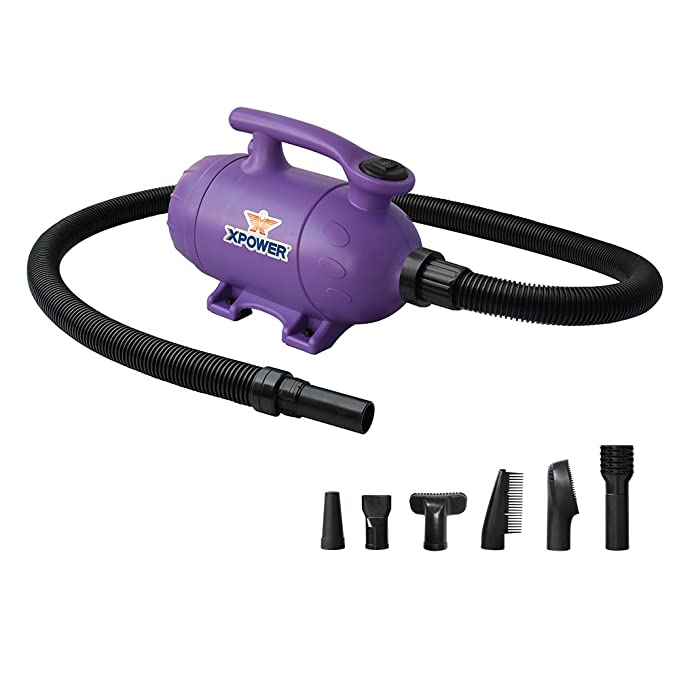 : Amazon.com: XPOWER B-2 2 HP Pro-at-Home 2-in-1 Pet Force Dryer and Vacuum, Purple