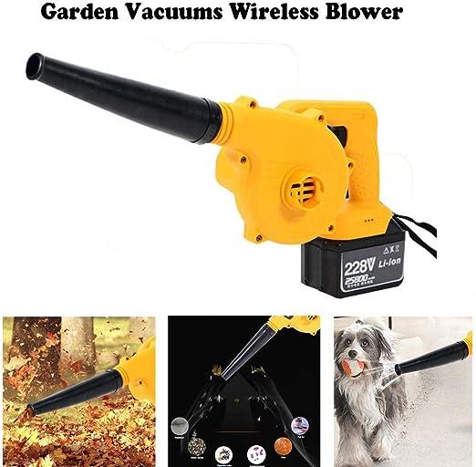 dream-cool Aspiradores de jardín Aspirador inalámbrico eléctrico ...