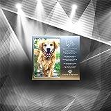 JOEZITON Pet Memorial Personalized Metal 4x6
