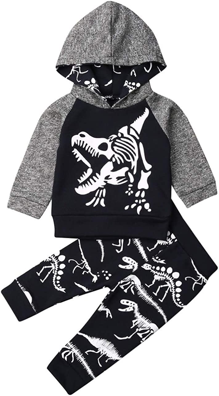 Baby Girls Fall Winter Outfits Long Sleeve Hoodie Dinosaurio Tops Floral Trousers Leopard Pants Newborn Girl Clothing Sets