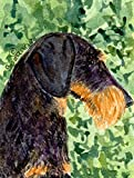 Caroline's Treasures SS8805CHF Dachshund Flag Canvas, Large, Multicolor Review
