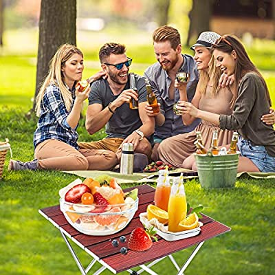 Portable Folding Camping Table, Ultralight Aluminum Table Compact Camp Table with Carry Bag for Outdoor, Picnic, Festival, Beach, Cooking, Home Use : Sports & Outdoors