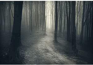 Amazon.com: 8x6ft Forest Halloween Fog Forest Woodland