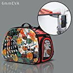 Pet-Products-Transparent-Pet-Carrier-Breathable-Portable-Foldable-Travel-Kennel-for-Small-or-Medium-Cat-Dog-Breed-with-EVA-Material-Soft-Side-Hard-Cover-Handbag-Puppy-Carrying-Shoulder-Bags-RED